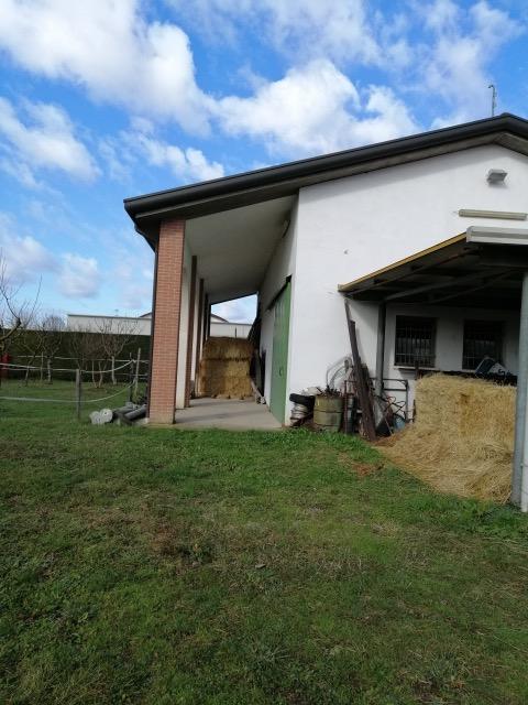 V16 Annesso Agricolo con terreno in vendita ad Abano Terme https://images.gestionaleimmobiliare.it/foto/annunci/210619/2668061/1280x1280/005__img_20210211_104854_1.jpg