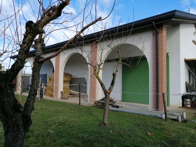 V16 Annesso Agricolo con terreno in vendita ad Abano Terme https://images.gestionaleimmobiliare.it/foto/annunci/210619/2668061/1280x1280/006__img_20210211_104922_1.jpg