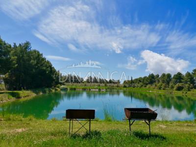 Azienda agricola con laghetto per pesca sportiva, Piombino, Livorno